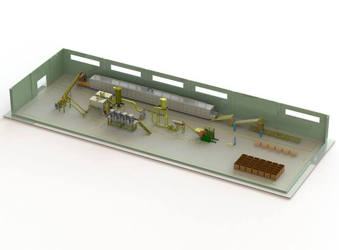Reconstituted tobacco plant line figure